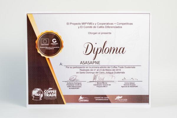 El Proyecto MIPYMES y Competitivas + El Comité de Cafés Diferenciados